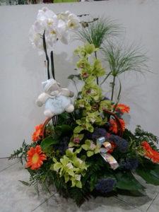 cesta de nacimiento en valencia